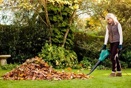 BOSCH ALS 25 zahradní vysavač a fukar 06008A1000